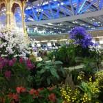 Aéroport de Bangkok