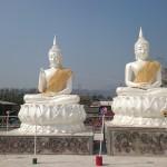 Deux Bouddhas blancs côte à côte