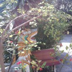 Le Jardin bien gardé !