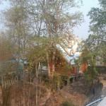 Temple niché dans la forêt