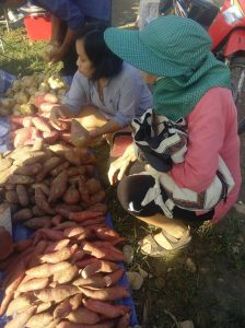 Choix des patates douces sur le marché