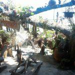 Ao Sangthian Beach - Apache guesthouse