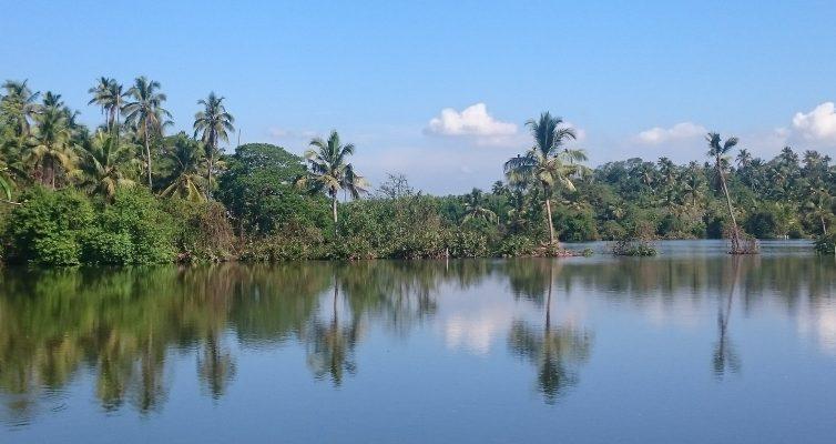 Aux alentours de Kumbalanghi