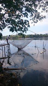 Pêche à Kumbalanghi
