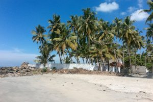 Bord de mer à Kumbalanghi