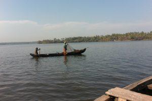 La pêche dans les backwaters